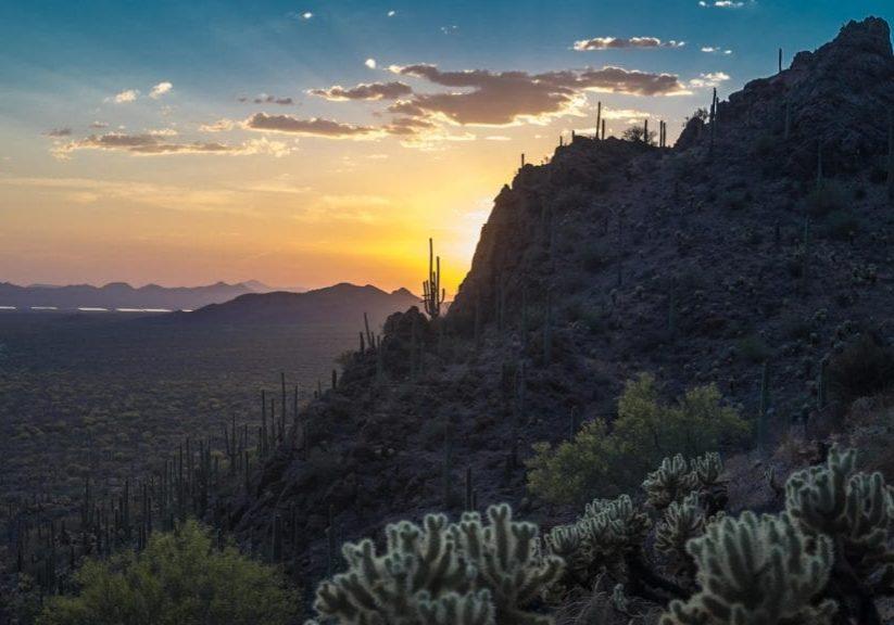 An Arizona Desert Sunset with mountains and a saguaro